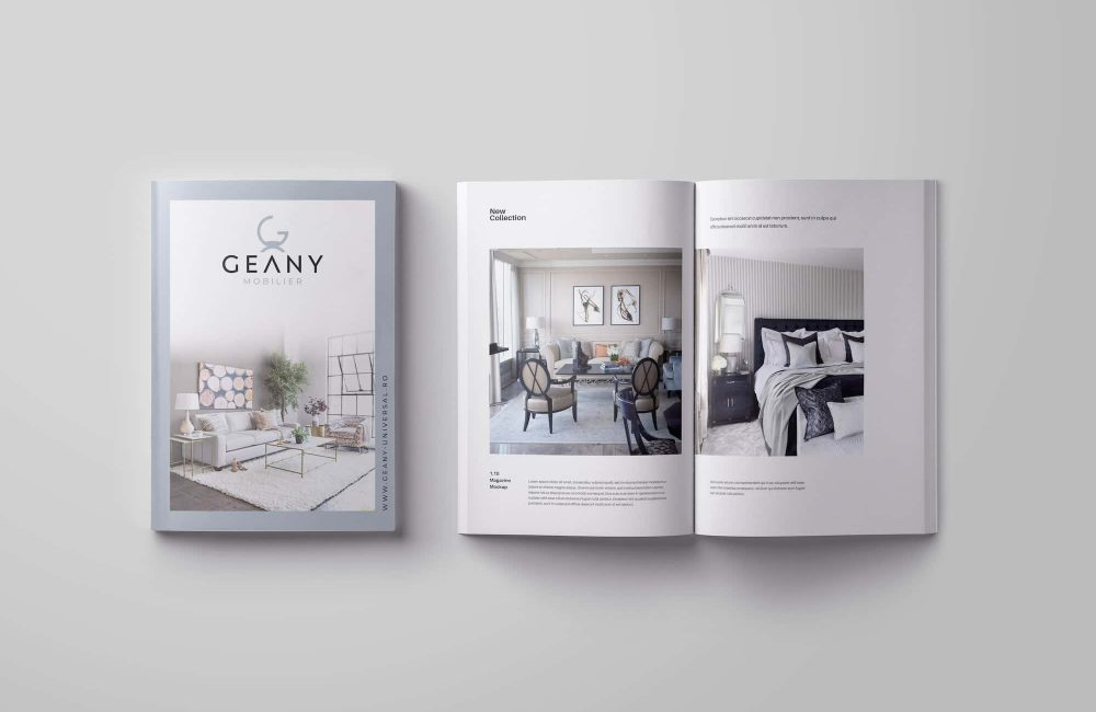 geany-mobilier-branding-the-color-mind-project