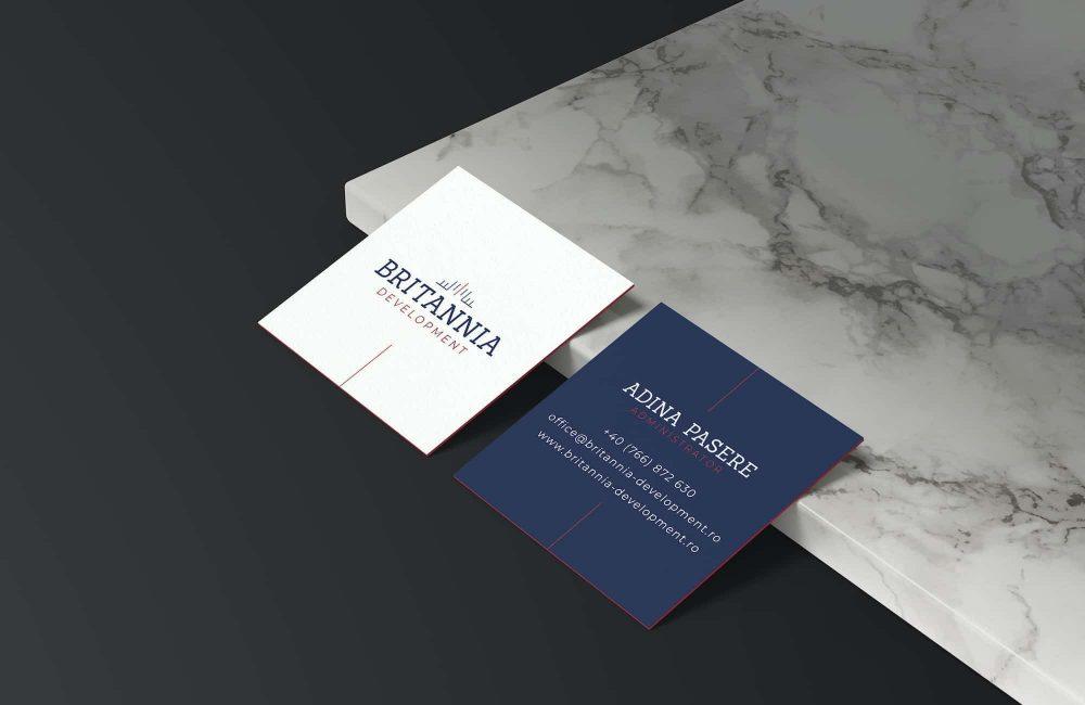 britannia-development-branding-the-color-mind-project